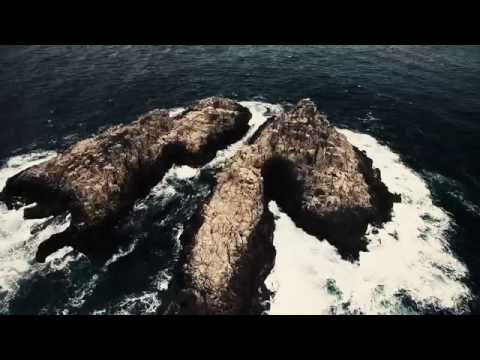 Donald Gould - Come Sail Away (Official Motion Music Video)