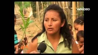 HUERTOS FAMILIARES - PATRONATO PROVINCIAL SANTO DOMINGO DE LOS TSACHILAS