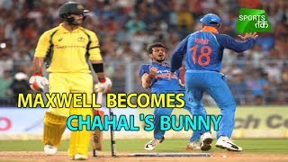 Maxwell Becomes Chahal's Bunny | Sports Tak