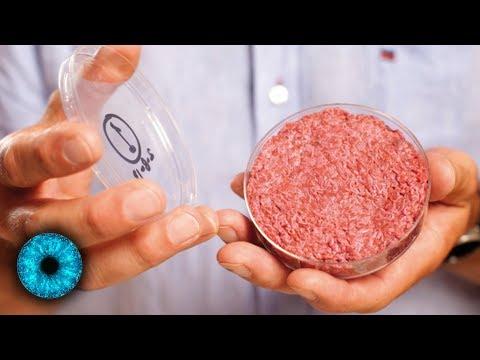 Fleisch aus dem Labor - Essen der Zukunft: Gesünder und nachhaltiger?!