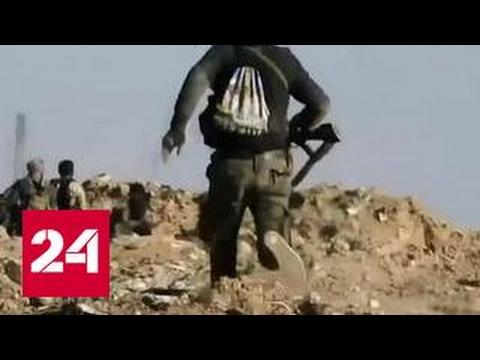 Химатака в Сирии: Россия подозревает Белые каски в подлоге