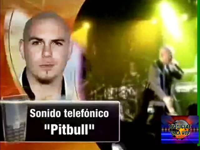 pitbull - pelea en un concierto en colorado.mp4