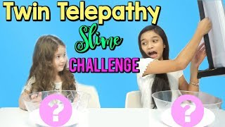 TWIN TELEPATHY CHALLENGE - Slime Edition!!!