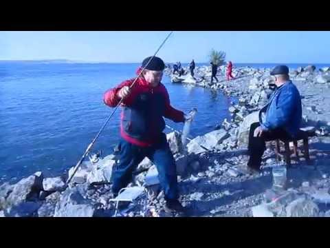 рыбалка в карагандинской области ащису