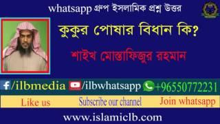 Download Sheikh Mustafizur Rahman   কুকুর পোষার বিধান কি? 3Gp Mp4