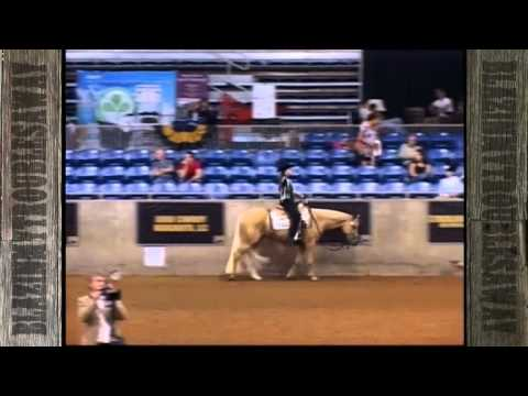 NSBA Horse Of The Year 2011