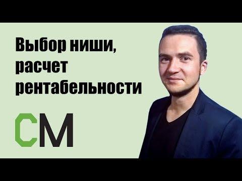Выбор ниши, расчет рентабельности проекта и маркетинговое планирование. Владислав Ткачев