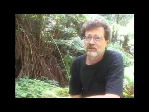 Terence McKenna - Final Earthbound Interview