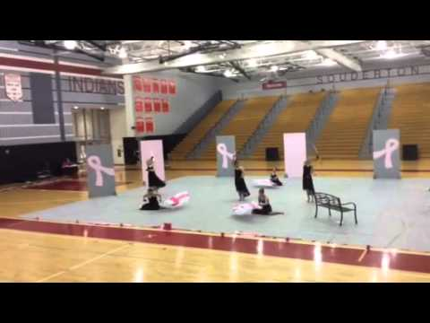 "Emmaus High School Indoor Color Guard 2014 ""The Fight"""