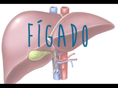 Limpeza do Fígado e Vesícula para a Saúde e Emagrecimento (Andreas Moritz)