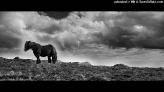 Darlyn Vlys - Horse Feat Haptic (Tim Engelhardt Update) [Atlant]