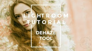Easy Lightroom Tutorial │dehaze tool │@littledovephotography