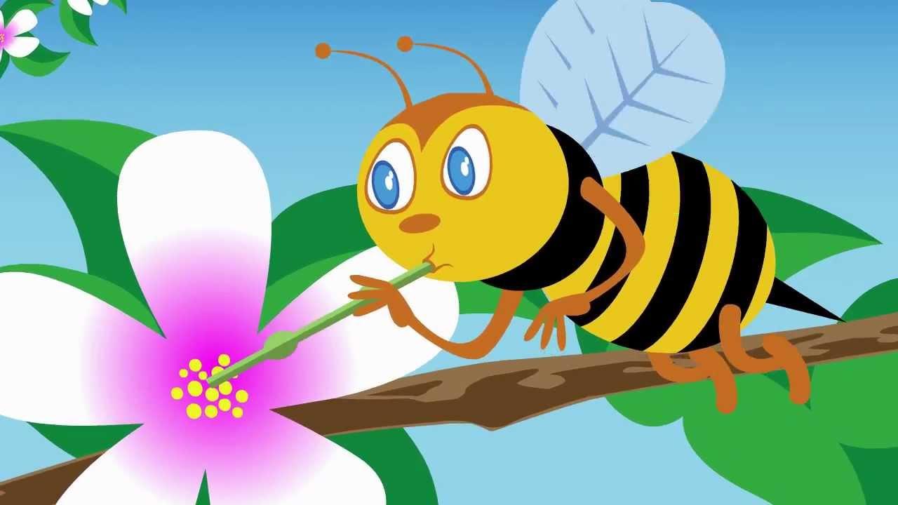 L 39 ape maia youtube for Disegni di squali per bambini