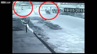 [Horses flee the scene of an acccident] Video