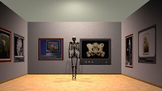 Prof. Roentgen Meets the Virtual Body - VOXEL-MAN and X-ray history