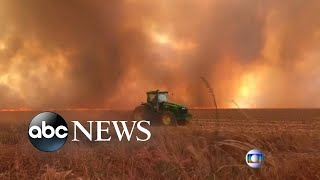 Record wildfires rage in Amazon rain forest l ABC News