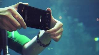 Tour the Wonderful Sea World With DOOGEE S90 Underwater Camera
