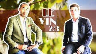 Démystifier le vin 🇫🇷, ép.2/3 : les blancs 🥂