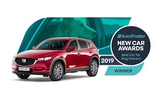 Auto Trader New Car Awards 2019 | Best car for dog owners