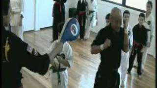 Martial Arts View-Modern Tae Kwon Do