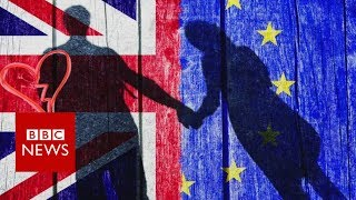 Bamboozled by Brexit? - BBC News