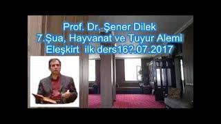 Prof. Dr. Şener Dilek - Şualar - 7.Şua - Hayvanat ve Tuyur Alemi (Eleşkirt-2017.07.17)