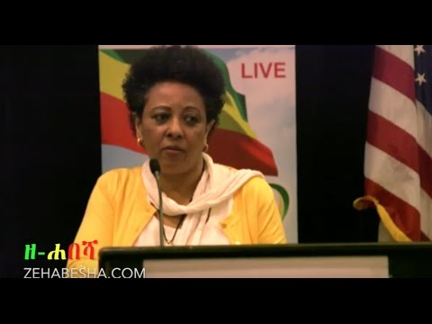 Dr Abeba Fekade's  Speech At The First Amhara Convention DC 2017