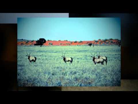 Southern Namibia road trip