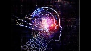 HUMANOS DE DISEÑO - El Futuro de Stephen Hawking - Documental 720p