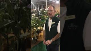 Painting With A Twist at Dearborn Market Orchid Show