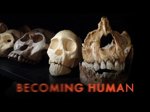 Becoming Human First Steps HD