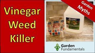 Vinegar Weed Killer - Does It Work - compare Roundup, vinegar and salt