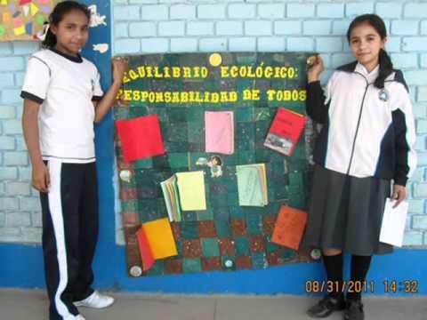 Periodicos murales ecologicos 2044 concurso juan tomis for Como organizar un periodico mural