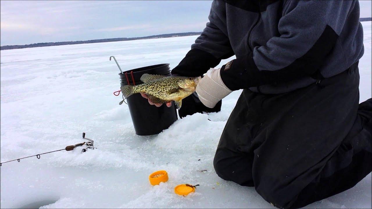 Ice Fishing Bluegill Ice Fishing Crappies,bluegills