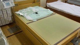 Tatami Bed in Japan!