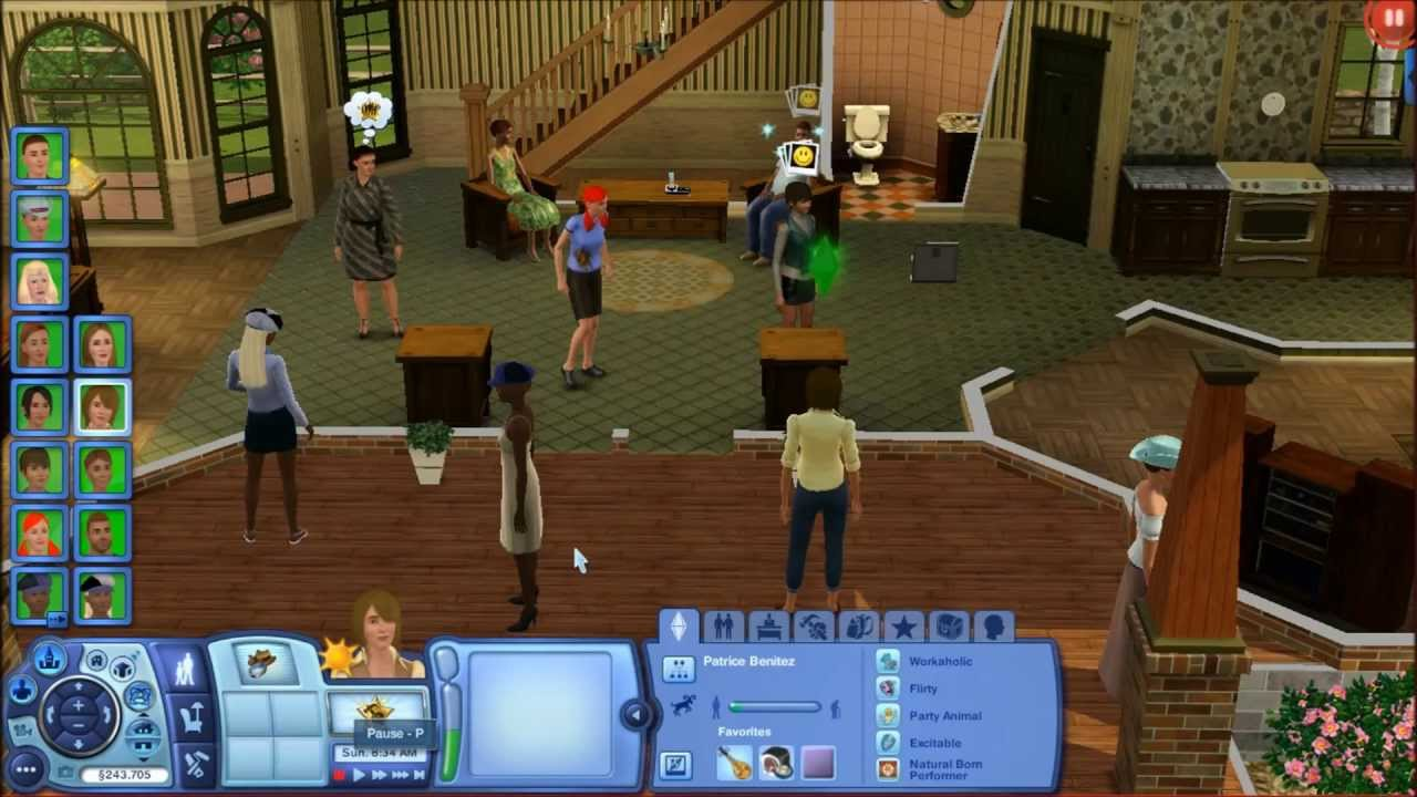 Cat Can T Get In The House Sims