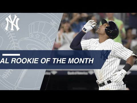 Miguel Andujar named American League Rookie of The Month