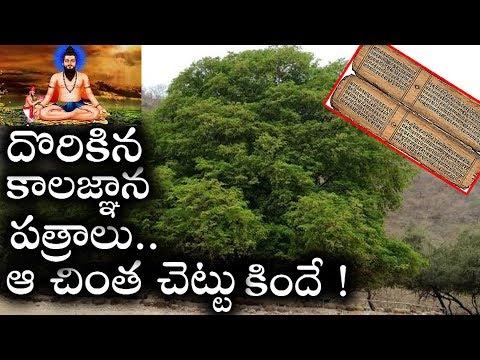 చింత చెట్టు కింద దొరికిన కాలజ్ఞాన పత్రాలు ! | కాలజ్ఞాన రహస్యాలు ! |  Kalagnana Rahasyalu in Telugu