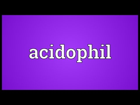 Header of acidophil