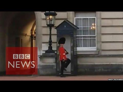Buckingham Palace Guardsman doing 'pirouettes' - BBC News