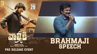 Actor Brahmaji Speech @ Valmiki Pre-Release Event | 14 Reels Plus