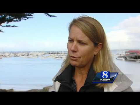 Protecting marine life in Monterey Bay