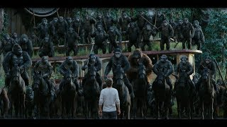 Dawn of the Planet of apes : apes do not want war full HD