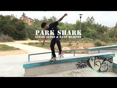 Park Sharks