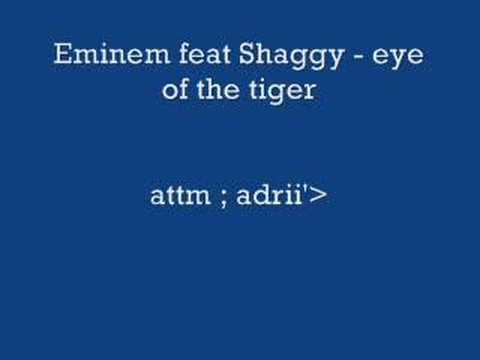 Eminem feat Shaggy - eye of the tiger