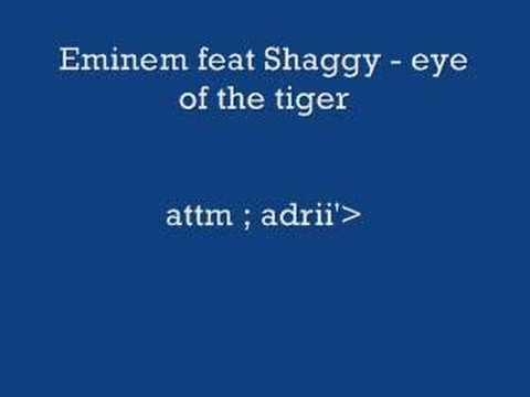 Eminem feat Shaggy - eye of the tiger