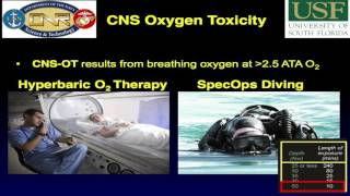 Ketogenic Diet & Hyperbaric Oxygen Therapy | Full Lecture by Dominic D'Agostino PhD
