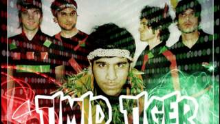 Watch Timid Tiger Gadget Girls video