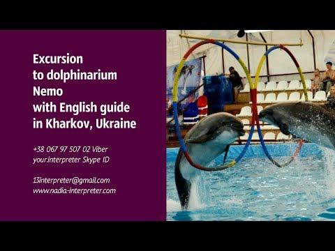 ENGLISH INTERPRETER, guide, translator, assistant in UKRAINE Kharkov Kiev Poltava Odessa Lviv Sumy