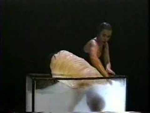 ChameckiLerner Dance Company